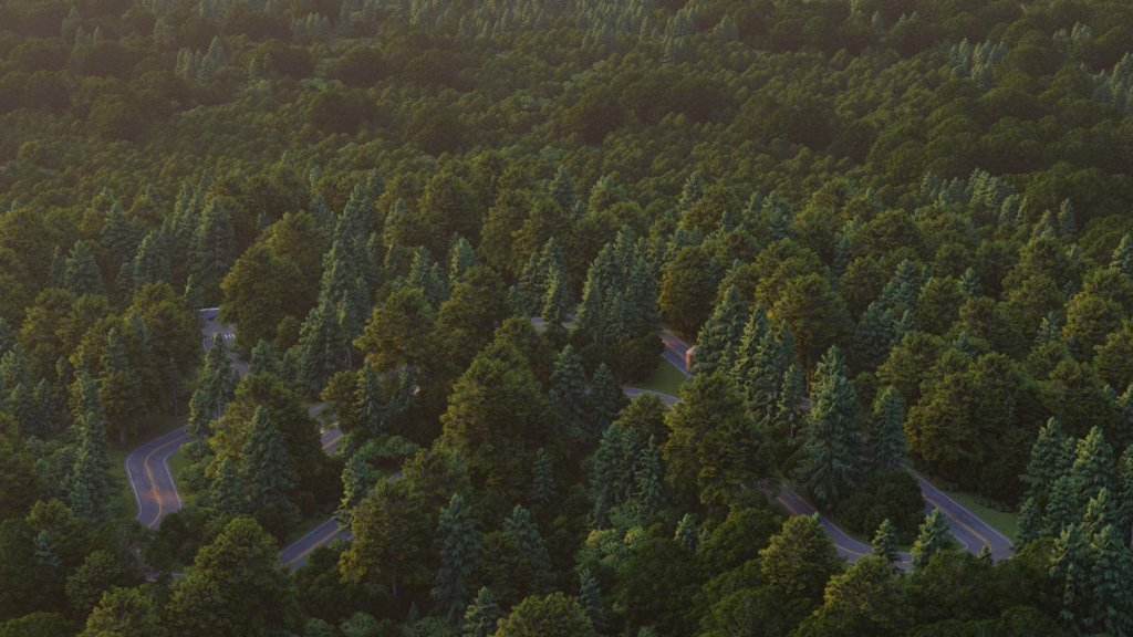 Forest 1536x864 Lumion10 1024x576 - Lumion What's New in Lumion 10
